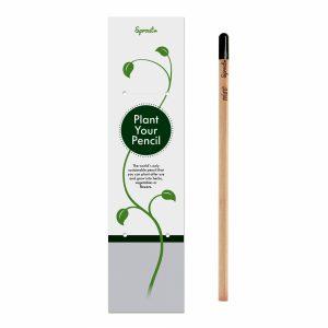 53067 Lápiz en packaging individual Sprout™